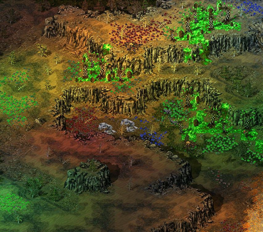 evergreen3.jpg