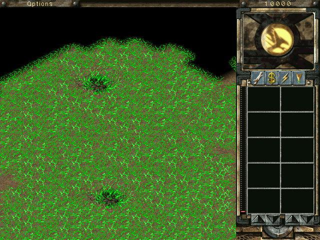 green vein.jpg